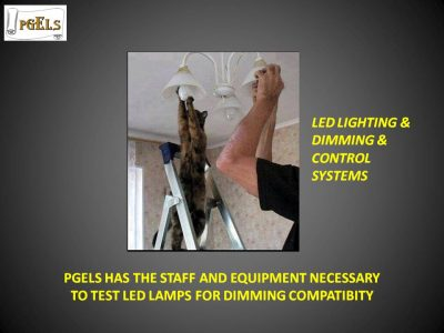 Cat and Man changing lightbulbs